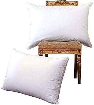 2 Pk NP Luxury White Goose Down Bed Pillows