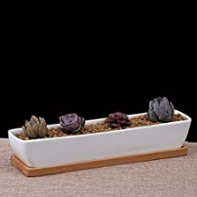 Succulent Plant Pot Cactus Plant Pot - Rectangular Ceramic Pot With Bamboo Tray Set of 2