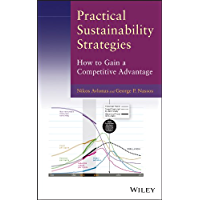 Practical Sustainability Strategies: How to Gain a Competitive Advantage (English Edition)