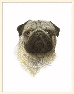 product image for Fiddler's Elbow Pug Box Blank Note Cards