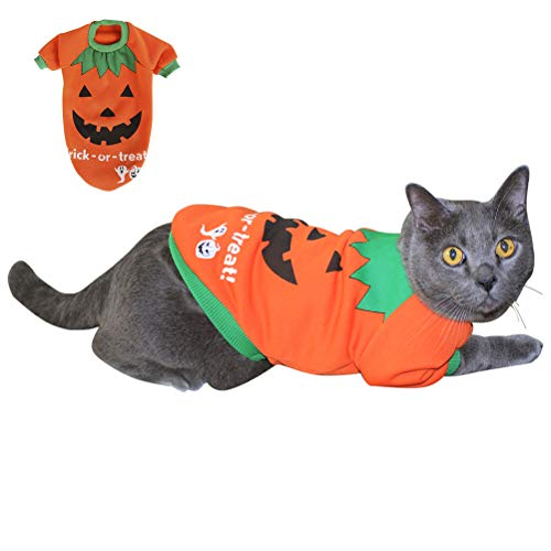 Found My Place Halloween Pet Pumpkin Costumes Puppy Dog and Cat Cute Fleece Shirt Pet Sweatshirt Orange -