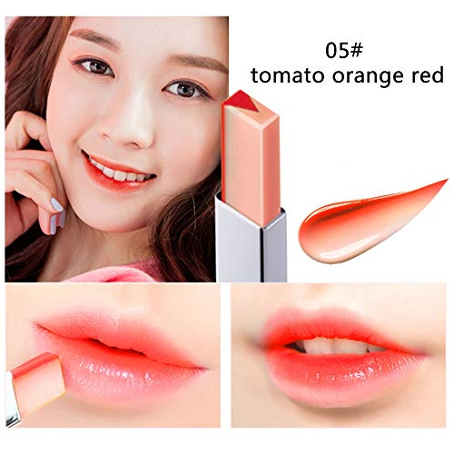 Double Color Lipstick Waterproof Long-Lasting Lip Gloss Moisturzing Nourishing Lipsticks Balm Lip Cosmetics By Shouhengda