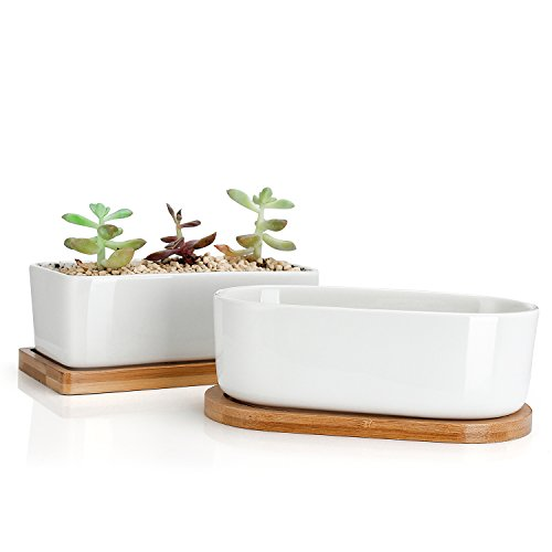 Greenaholics Succulent Plant Pots - 6 Inch Rectangular Ceramic Planters, Small Cactus Container, Bonsai Pots, Flower Pots with Drainage Hole, Bamboo Tray, Set of 2, White ()