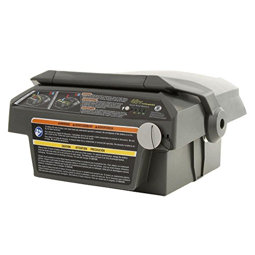 Ryobi 20 in. 48-Volt Cordless Self-Propelled Lawn Mower Replacement Battery