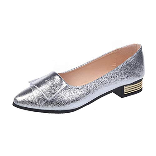 Girls's Basic Pointy Toe Flat Sneakers,Informal Leather-based Loafers for Social gathering Work Enterprise (Silver 2, US:9)