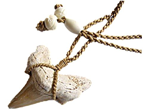 (HAWAIIAN MANO PENDANT NECKLACE FOSSIL SMALL 1