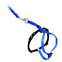 PetSafe Easy Walk Cat Harness with Bungee Leash, Large, Blue