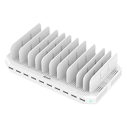 iPad Charging Station 96W 10-Port Alxum USB Charging Station Multiple Device USB Charger with Smart IC Tech, Organizer Stand for iPhone X,Xs MAX,8,7,6, Samsung Google Nexus LG, Tablets, White
