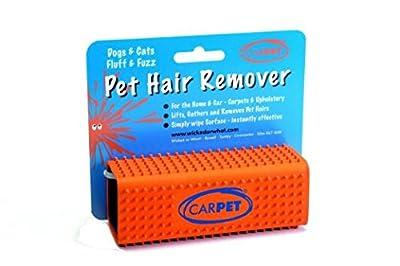 CarPet Pet Hair Remover from CarPet