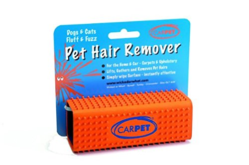 CarPet Pet Hair Remover Size:Pack of 6 (Orange)