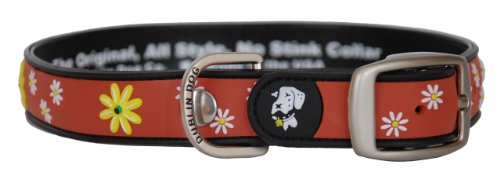All Style 12-1/2-Inch by 17-Inch No Stink Dog Collar, Medium, Black Eye Susan