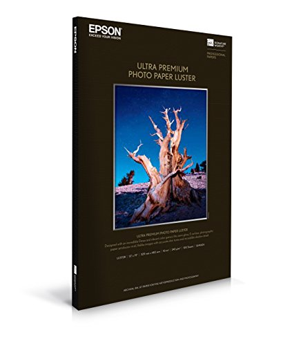 S041604 - Epson Premium Luster Photo Paper 13'' x 19'' (100 Sheets) by Epson (Image #1)
