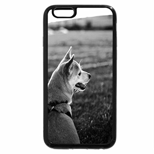 iPhone 6S Plus Case, iPhone 6 Plus Case (Black & White) - Dog in the field