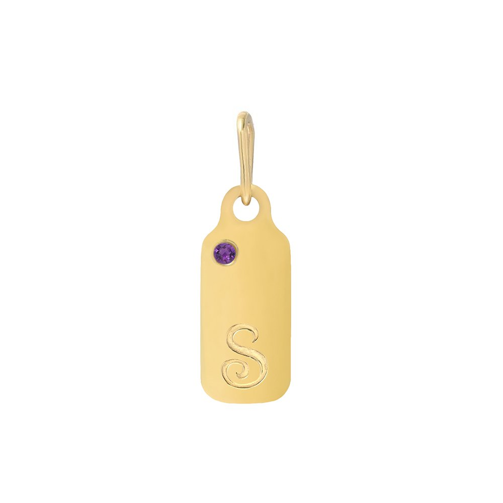 14k Gold Amethyst February Birthstone Cursive Letter S Dog-tag Necklace