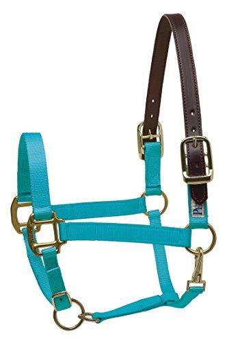 (Perri's Leather Pony Turquoise Nylon Safety Halter)