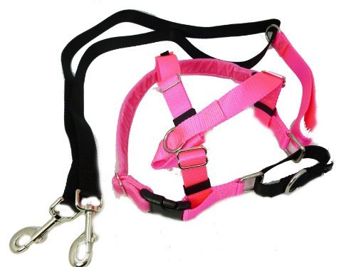 pink Large2 Hounds Design PK LG KG Freedom NoPull Dog Harness with Leash, (1  Wide), Kelly Green, Large