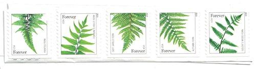 Vintage Postage Stamps (USPS Ferns Forever Stamps - 20 Stamps)