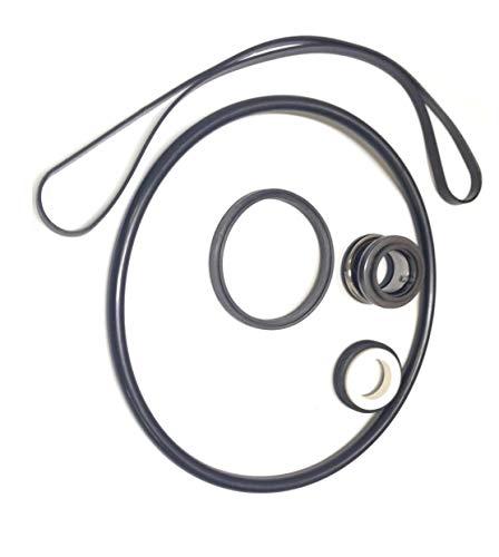 - Pool Pump O-Ring Seal Repair Kit For Hayward Super II Pump Series 3000X Kit 2