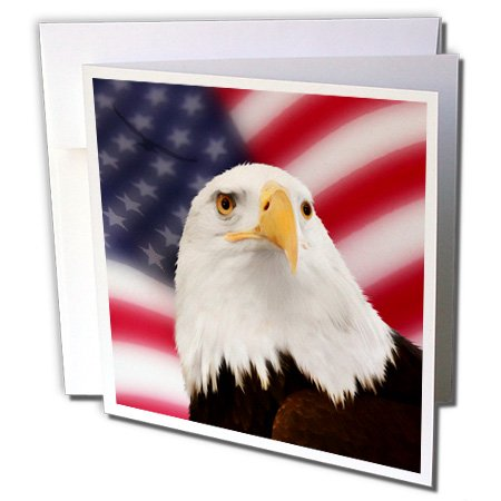 - 3dRose Patriotic American Flag and Bald Eagle - Greeting Cards, 6 x 6 inches, set of 6 (gc_62902_1)