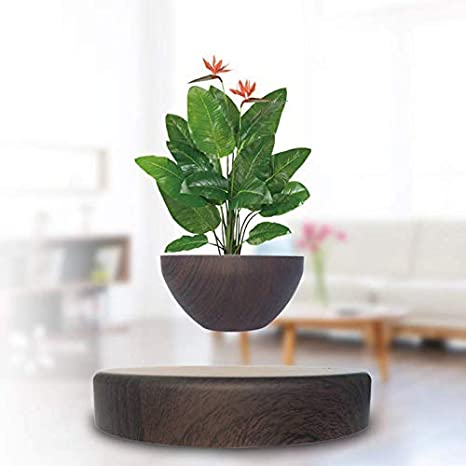 Amazon Com Lqgpsx Floating Bonsai Pot Magnetic Suspension Levitating Air Flower Pots Creative Design Levitation Bonsai Home Office Decorations Fun Gift Darkwoodgrain Home Kitchen