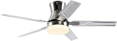 RainierLight 48 Inch Flush Mount Ceiling Fan