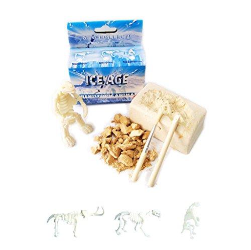 Ice Age Prehistoric Animal Excavation ()