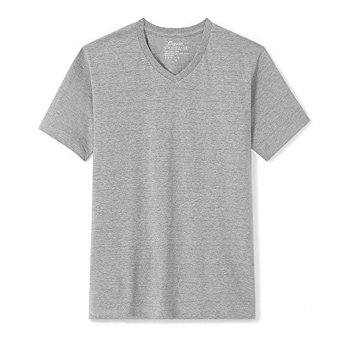 Organic Signatures Men's Short-Sleeve V-Neck Cotton T-Shirt (X-Large, Heather Grey)