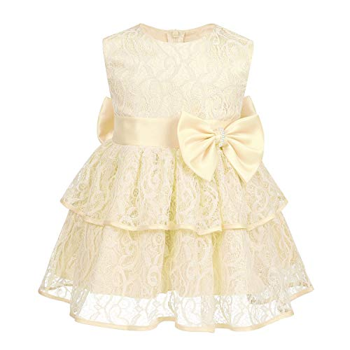 Agoky Baby Flower Girls Floral Embroidered Christening Baptism Formal Ball Gown Dress Champagne Lace Embroidered 18-24 ()