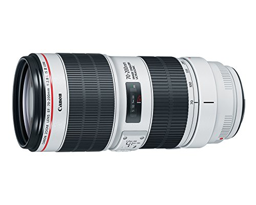 Buy canon telephoto lens 70-200