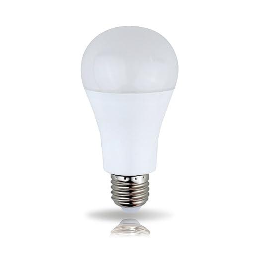 ledmaxx 272001 a + – Bombilla LED, plástico, 20 watts, E27, Blanco