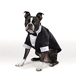 "East Side Collection ""Yappily Ever After"" Groom's Tuxedo for Dogs, 12"" Small"