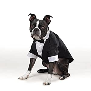 """East Side Collection """"Yappily Ever After"""" Groom's Tuxedo for Dogs, 12"""" Small"""