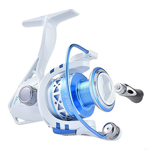 KastKing Summer and Centron Spinning Reels Spinning Fishing Reel 9 +1 BB Light Weight Ultra Smooth Powerful - Graphite Trolling Bait