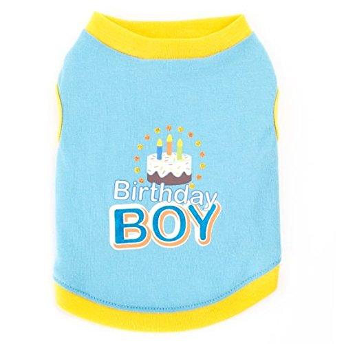 TOP PAW bluee Birthday Boy Dog TeeX-Small