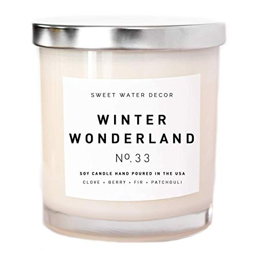 Water Winter Wonderland (Winter Wonderland Candle Natural Soy Wax White Jar Silver Lid Scented Clove Cinnamon Berry Plum Fir Balsam Patchouli Holiday Christmas Home Decor For Her Made in USA Lead and Gluten)