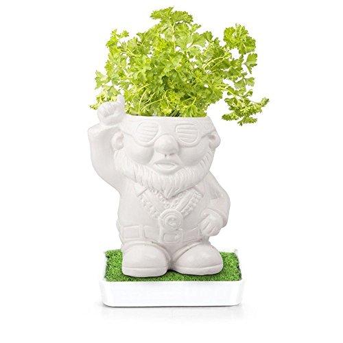 Gnome Planter (Herb Heads Disco Dave Grow Parsley Plants Kitchen Garden in Ceramic Pot)