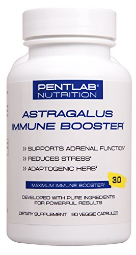 Astragalus Extract 500mg - Non GMO Effective and Powerful Great antioxidant Cardio Vascular Support Much More 90 Cap Pentlab