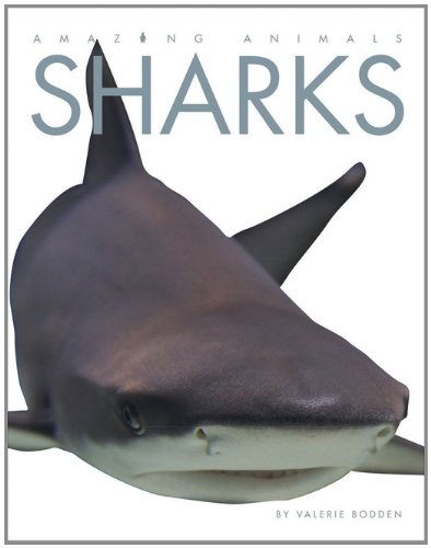 Amazing Animals: Sharks (Amazing Sharks)