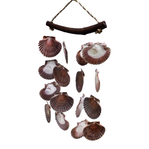 US Shell, Flat Windchime with Vibrant Colored Sea Shells]()