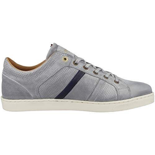 Ginnastica Scarpe Enzo Low gray Violet 3jw Grigio Pantofola Uomo Da Basse D'oro qX4gF