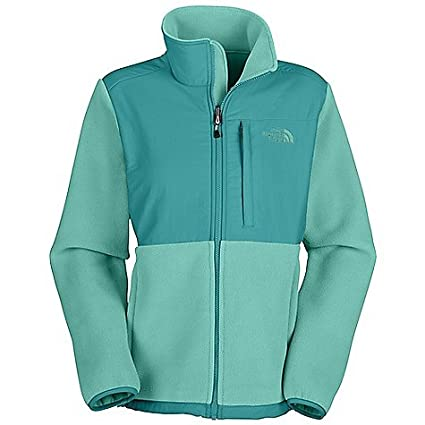 4e3b9f39e Amazon.com: The North Face Denali Fleece Jacket - Women's R Ion Blue ...