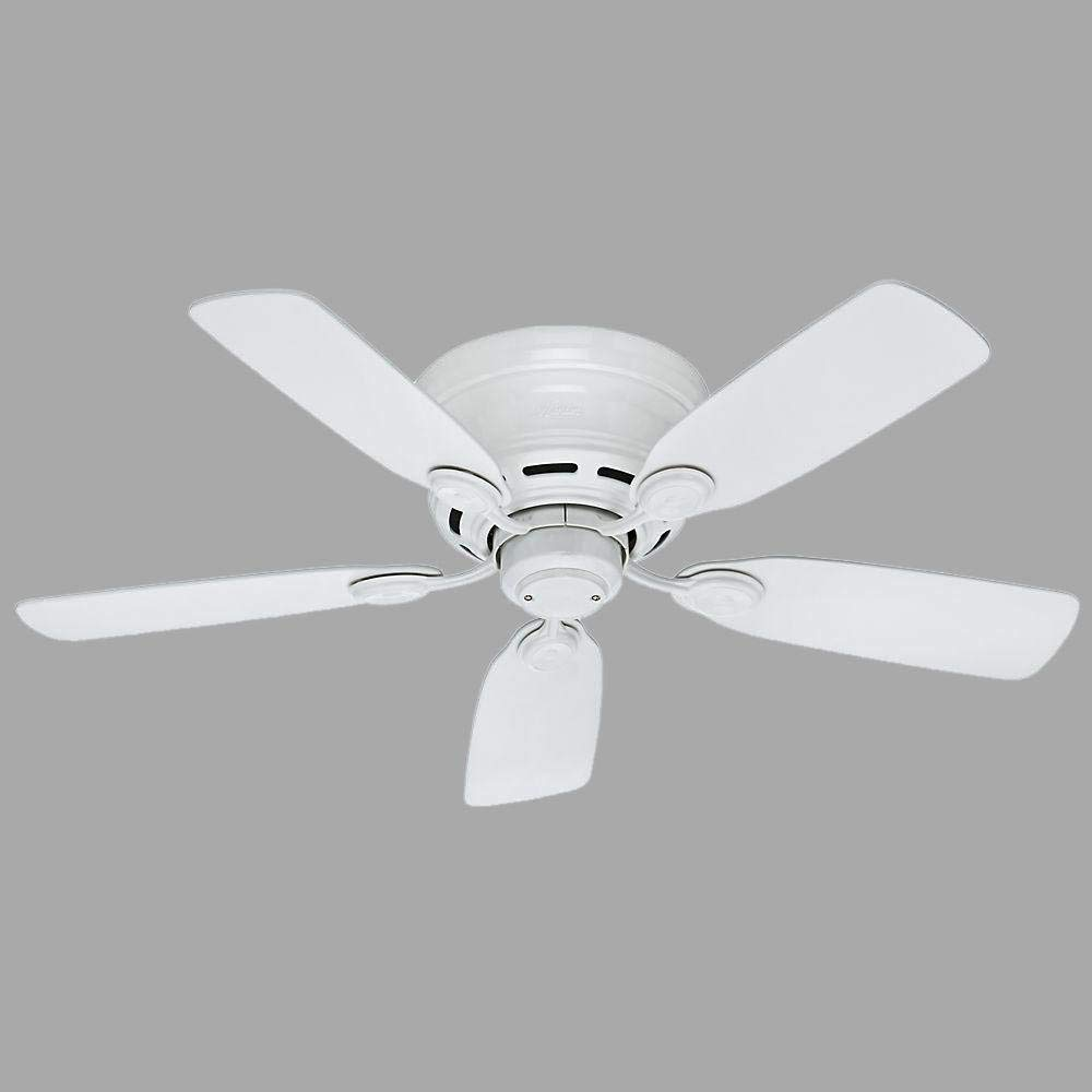 Hunter Indoor Low Profile IV Ceiling Fan, with pull chain control -  42 inch, White, 51059 by Hunter Fan Company (Image #3)