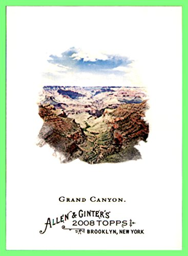 2008 Topps Allen and Ginter #144 Grand Canyon Colorado River Arizona - Grand River Of Shops The