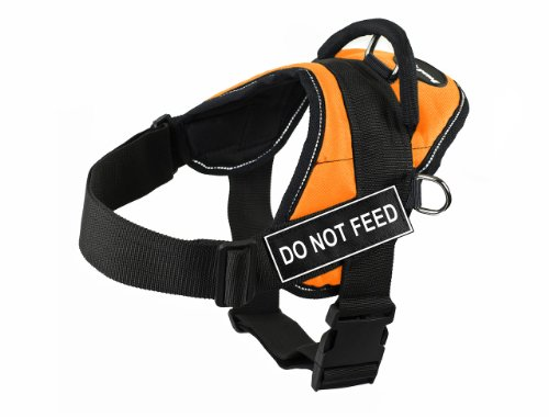 Dean & Tyler Fun Do Not Feed X-Large Orange Harness with Reflective Trim