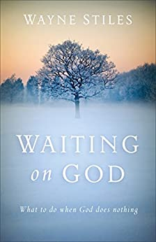 Waiting on God: What to Do When God Does Nothing by [Stiles, Wayne]