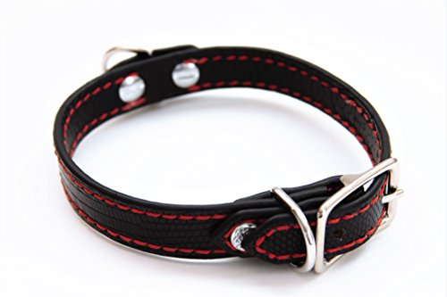 Dog Collar Genuine Lizard Small (Black/Red) by Randall and Sons