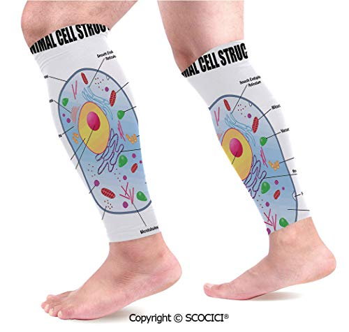 Flexible Breathable Comfortable Leg Skin Protector Sleeve Microbiology Theme Animal Cell Structure Genetic Research School Study Science Decorative Calf Compression Sleeve