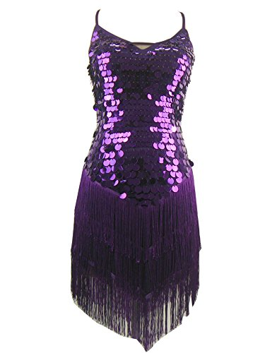 Roaring Twenties 20s 1920 Themed 30th Birthday Party Dresses Costume Purple, Purple, One (20 Themed Costumes)