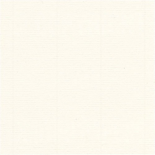 Fox River Select 25 Writing Warm White Wove 24# 8.5x11 500/pack by FoxRiver by FoxRiver