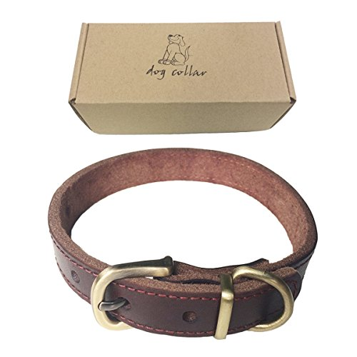 Flat Leather Dog Collar (Dog Leather Training Collar with Name Tag for Small Medium Large Doggy (S))